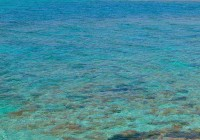 Grenada: Calypso und Vanille