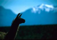 Chile: Endlose Weiten